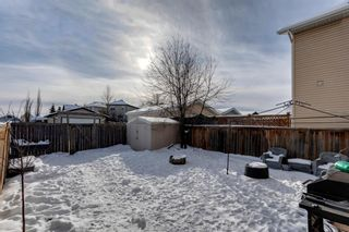 Photo 29: 400 Prestwick Circle SE in Calgary: McKenzie Towne Detached for sale : MLS®# A1070379