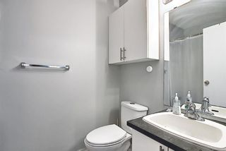 Photo 23: 142 Martindale Boulevard NE in Calgary: Martindale Detached for sale : MLS®# A1111282