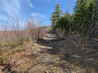 Photo 7: Lot E Hebb Road in Wileville: 405-Lunenburg County Vacant Land for sale (South Shore)  : MLS®# 202106726