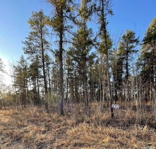 Photo 6: Over 1 acre lots in Hudson Bay: Lot/Land for sale : MLS®# SK850476