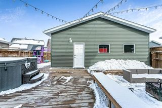 Photo 29: 178 Auburn Crest Way SE in Calgary: Auburn Bay Detached for sale : MLS®# A1071986