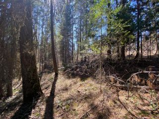 Photo 10: Lot L VIEW RIDGE ROAD in Nelson: Vacant Land for sale : MLS®# 2460797