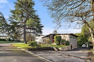 Photo 3: 3940 Margot Pl in : SE Maplewood House for sale (Saanich East)  : MLS®# 873005