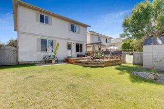 Photo 44: 137 Douglas Glen Manor SE in Calgary: Douglasdale/Glen Detached for sale : MLS®# A1116437