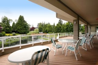 """Photo 19: 147 4001 OLD CLAYBURN Road in Abbotsford: Abbotsford East Townhouse for sale in """"CEDAR SPRINGS"""" : MLS®# F1439448"""