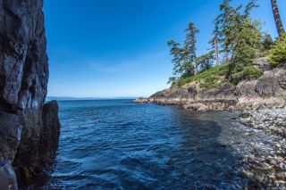 Photo 46: 2470 Lighthouse Point Rd in : Sk French Beach House for sale (Sooke)  : MLS®# 867503