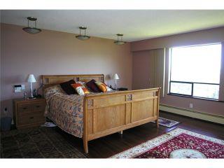 Photo 9: 7471 PANDORA Drive in Burnaby: Westridge BN House for sale (Burnaby North)  : MLS®# V840086