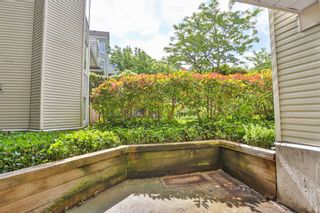 """Photo 17: 102 3628 RAE Avenue in Vancouver: Collingwood VE Condo for sale in """"RAINTREE GARDENS"""" (Vancouver East)  : MLS®# V1129612"""