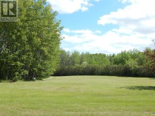 Photo 9: 109063 Township Road  175 in High Level: Vacant Land for sale : MLS®# A1091720