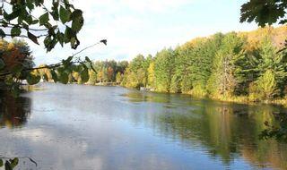 Photo 19: 131 Stanley Road in Kawartha Lakes: Rural Eldon House (Bungalow) for sale : MLS®# X4948257