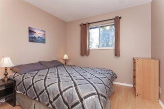 Photo 11: 20557 114 Avenue in Maple Ridge: Southwest Maple Ridge House for sale : MLS®# R2327151