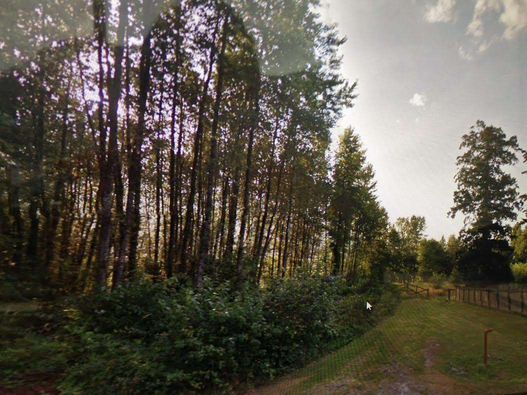 Main Photo: 41605 GRANT Road in Squamish: Brackendale Land for sale : MLS®# R2112378