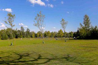"""Photo 19: 213 10530 154 Street in Surrey: Guildford Condo for sale in """"Creekside"""" (North Surrey)  : MLS®# R2205122"""