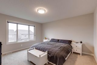 Photo 30: 17 Howse Terrace NE in Calgary: Livingston Detached for sale : MLS®# A1131746