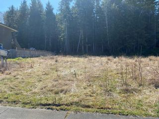 Photo 1: 6250 Hunt St in : NI Port Hardy Land for sale (North Island)  : MLS®# 873031