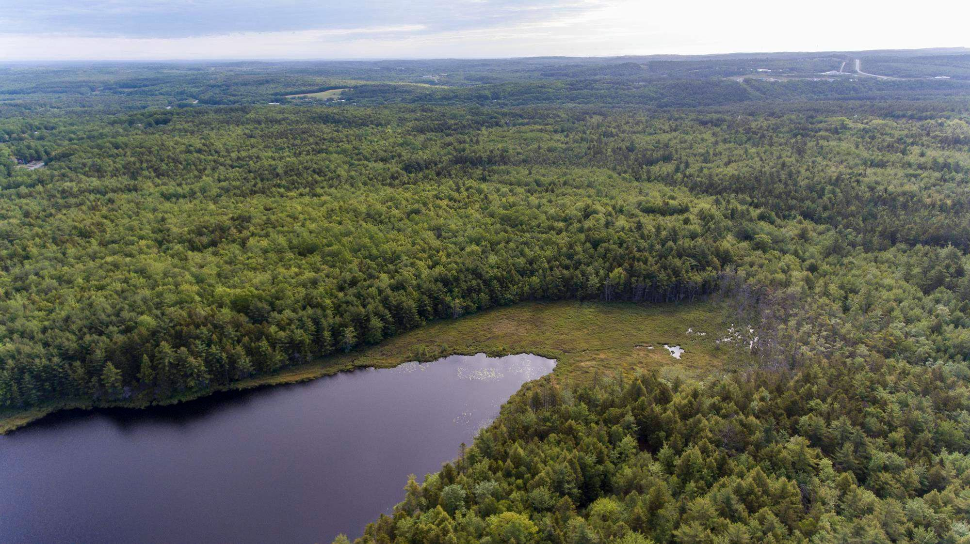 Main Photo: Lots St. Phillips Street in Bridgewater: 405-Lunenburg County Vacant Land for sale (South Shore)  : MLS®# 202115973
