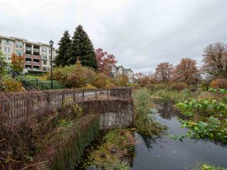 """Photo 36: 203 255 ROSS Drive in New Westminster: Fraserview NW Condo for sale in """"GROVE AT VICTORIA HILL"""" : MLS®# R2527121"""