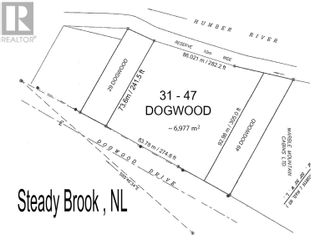 Photo 19: 31-47 DOGWOOD Drive in STEADY BROOK: Retail for sale : MLS®# 1204554