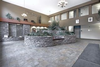 Photo 6: 136 10 Discovery Ridge Close SW in Calgary: Discovery Ridge Apartment for sale : MLS®# A1057299