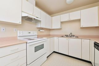Photo 9: 203 3460 Quadra St in : SE Quadra Condo for sale (Saanich East)  : MLS®# 882774