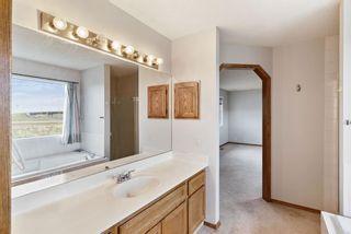 Photo 22: 319 Eldorado Place NE in Calgary: Monterey Park Detached for sale : MLS®# A1114122