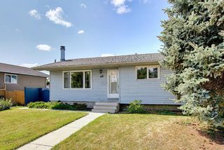 Photo 4: 48 DOVERTHORN Place SE in Calgary: Dover Detached for sale : MLS®# A1023255