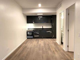 Photo 9: 205 377 Broadview Avenue in Toronto: North Riverdale Condo for lease (Toronto E01)  : MLS®# E5215908