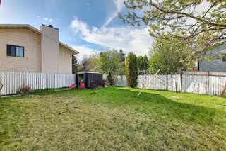 Photo 37: 20 Whitefield Close NE in Calgary: Whitehorn Detached for sale : MLS®# A1101190