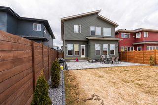 Photo 41: 2929 KOSTASH Drive in Edmonton: Zone 56 House for sale : MLS®# E4243548