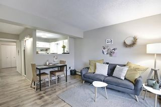 Photo 8: 202 1717 12 Street SW in Calgary: Lower Mount Royal Apartment for sale : MLS®# A1079434