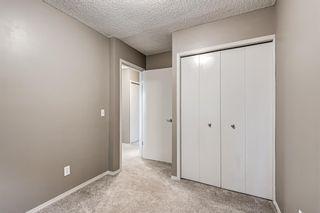 Photo 28: 39 Abbeydale Villas NE in Calgary: Abbeydale Row/Townhouse for sale : MLS®# A1149980