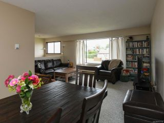 Photo 5: 558 23rd St in COURTENAY: CV Courtenay City House for sale (Comox Valley)  : MLS®# 797770