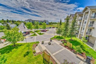 Photo 21: 337 1717 60 Street SE in Calgary: Red Carpet Apartment for sale : MLS®# A1067174