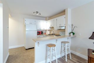 Photo 6: 16 101 25 Avenue SW in Calgary: Mission Apartment for sale : MLS®# A1081239