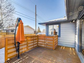 Photo 40: 95 Ferncliff Crescent SE in Calgary: Fairview Detached for sale : MLS®# A1064499