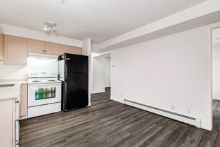 Photo 13: 3209 1620 70 Street SE in Calgary: Applewood Park Apartment for sale : MLS®# A1116068