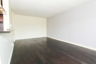Photo 7: 305 4455C Greenview Drive NE in Calgary: Greenview Apartment for sale : MLS®# A1133635