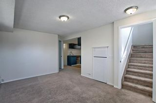 Photo 34: 66 Erin Green Way SE in Calgary: Erin Woods Detached for sale : MLS®# A1094602
