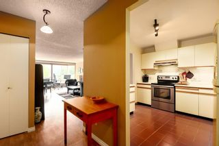 Photo 15: 606 518 MOBERLY Road in Vancouver: False Creek Condo for sale (Vancouver West)  : MLS®# R2483734