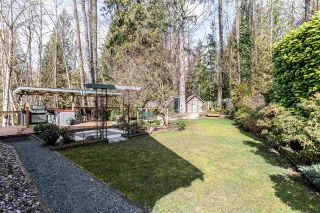Photo 25: 8536 TERRIS Street in Mission: Mission BC House for sale : MLS®# R2548031