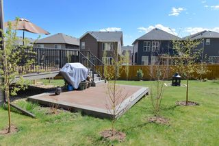 Photo 43: 130 Nolanshire Crescent NW in Calgary: Nolan Hill Detached for sale : MLS®# A1104088