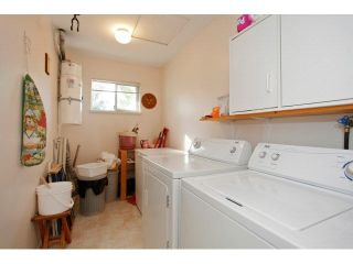 """Photo 15: 108 21937 48TH Avenue in Langley: Murrayville Townhouse for sale in """"ORANGEWOOD"""" : MLS®# F1448884"""