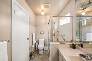 Photo 11: 1143 Nicholson St in Saanich: SE Lake Hill House for sale (Saanich East)  : MLS®# 850708