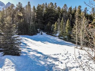 Photo 10: 14 PROSPECT Heights: Canmore Residential Land for sale : MLS®# A1146101