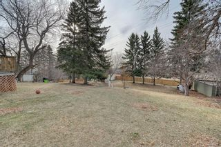 Photo 6: 10 Stanley Crescent SW in Calgary: Elboya Detached for sale : MLS®# A1089990