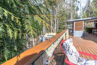 Photo 35: 8536 TERRIS Street in Mission: Mission BC House for sale : MLS®# R2548031