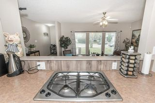 Photo 11: 703 KNOTTWOOD Road S in Edmonton: Zone 29 House for sale : MLS®# E4261398