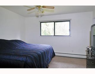 Photo 5: 25035 FERGUSON Avenue in Maple Ridge: Cottonwood MR House for sale : MLS®# V811377