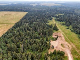 Photo 17: 31339 Rge Rd 55: Rural Mountain View County Land for sale : MLS®# A1136736