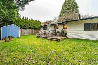 Photo 23: 20772 52 Avenue in Langley: Langley City House for sale : MLS®# R2582073